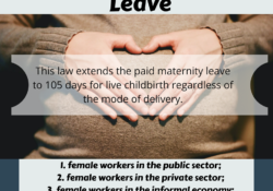 Expanded Maternity Leave