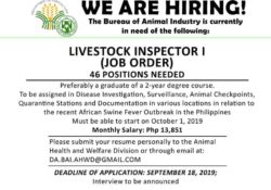 BAI in need of live stock inspector