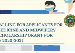 doh pre service scholarship program