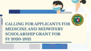 doh pre service scholarship program